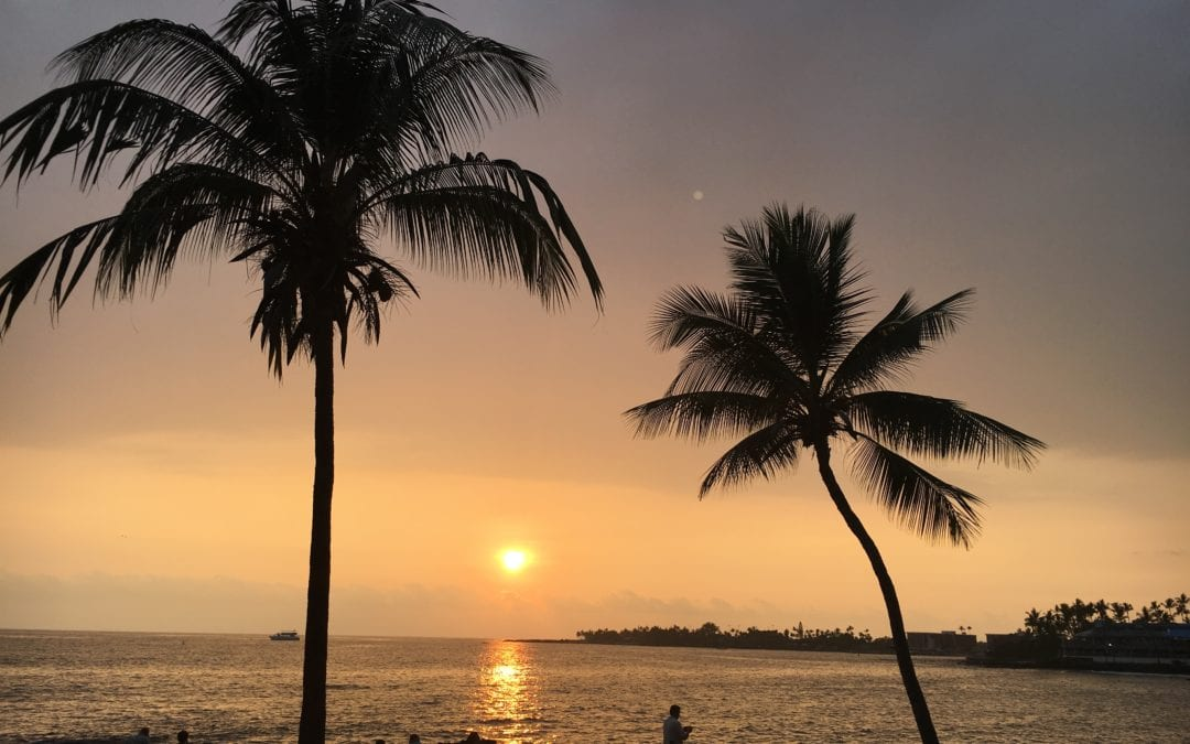Bier im Regen – Schildkröten in der Sonne – Mantas im Mondschein … Wir2 in Gedanken
