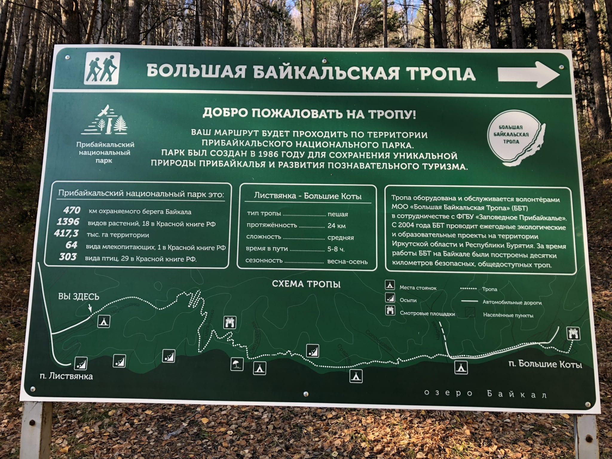 Russisch Teen Der Wald
